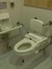 japon tuvaleti