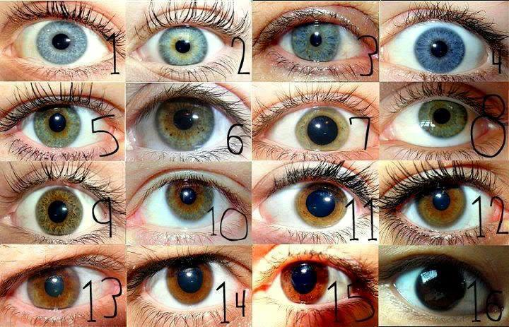 en güzel eyeliner hangisi