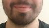 sözlük erkeklerinin sakalları